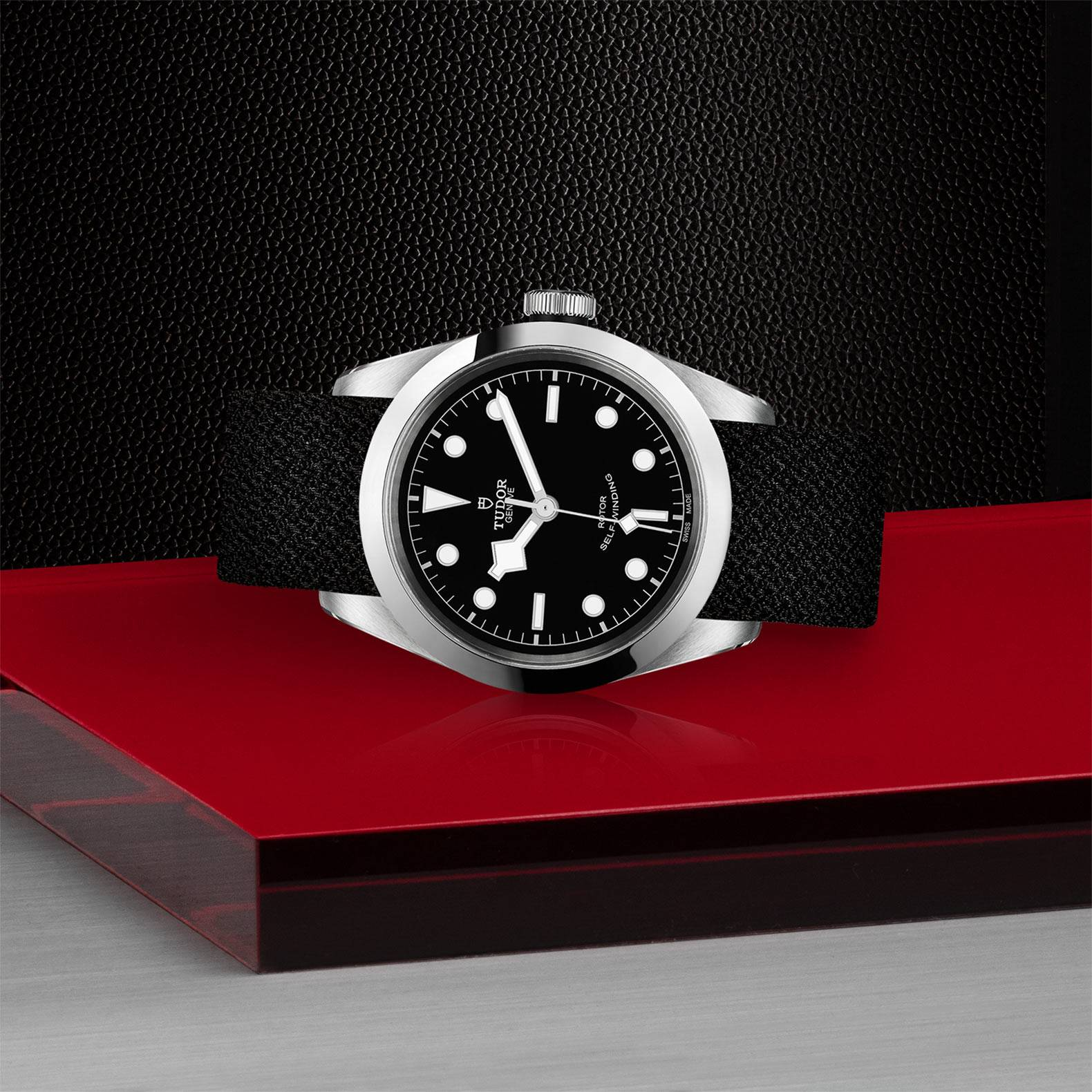 Tudor Black Bay 32 / 36 / 41 M79540-0009